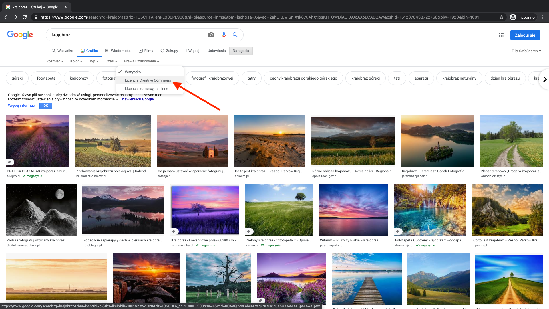 Google - bank darmowych zdjęć wysokiej jakości